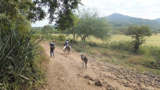 Telica Hiking Tours : En route du Telica vers San Jacinto