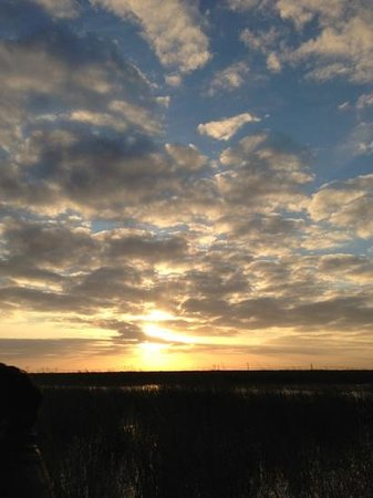 Sawgrass Recreation Park: Sunset view from the airboat!