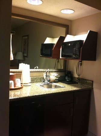 Hampton Inn Oxford-Anniston: loved the small wet bar area!! needed the extra sink!!