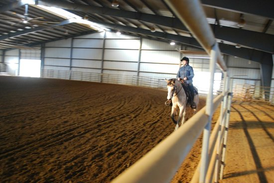 Clearview Horse Farm B&B: Reining Lesson in the arena
