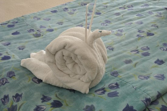Casa Mexicana Cozumel: towel art