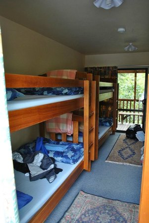 Kanuka Ridge Abel Tasman Backpackers: Dorm