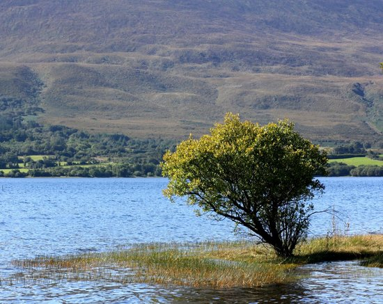 Loch Lein Country House : Lower Lake a 3 minute walk from hotel
