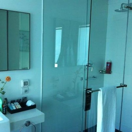 Crowne Plaza Tel Aviv City Center: Bathroom shower theres also a bath tub