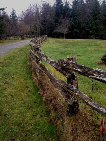 لوست ماونتن لودج: driveway fence 