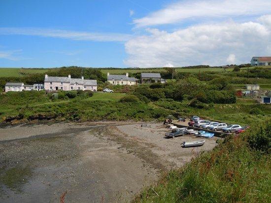 Trellyn Woodland Camping: Views