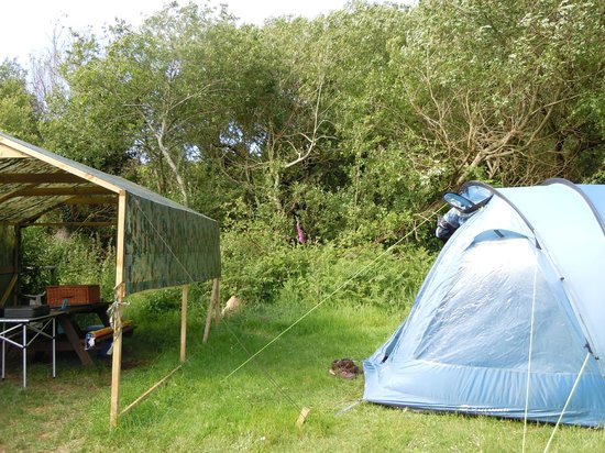 Trellyn Woodland Camping: Valley 1