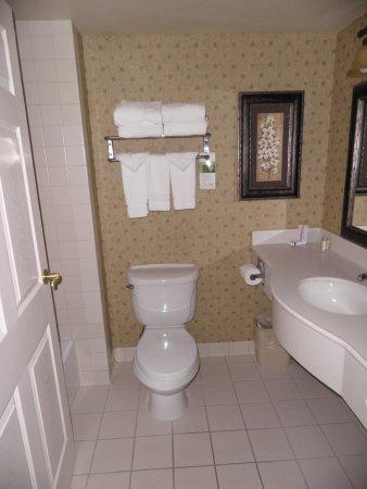 Wingate by Wyndham Peoria: Room 114