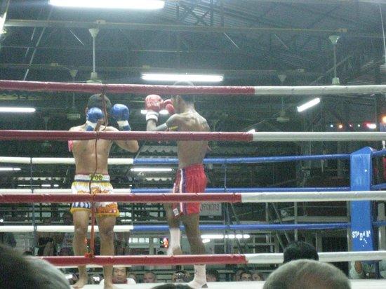 Suwit Muay Thai Training Camp & Gym: Muay Thai 1