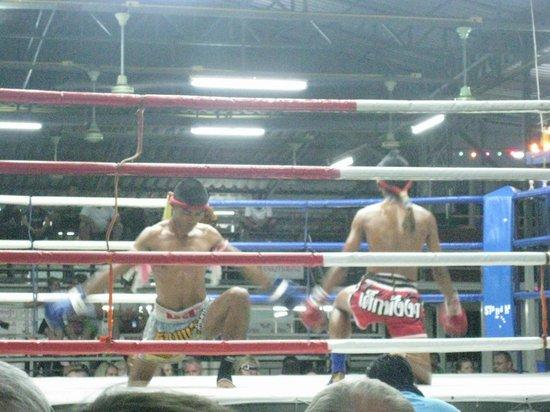 Suwit Muay Thai Training Camp & Gym: Muay Thai 3