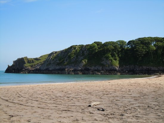 Trellyn Woodland Camping: Barafundle, best beach in Britain!
