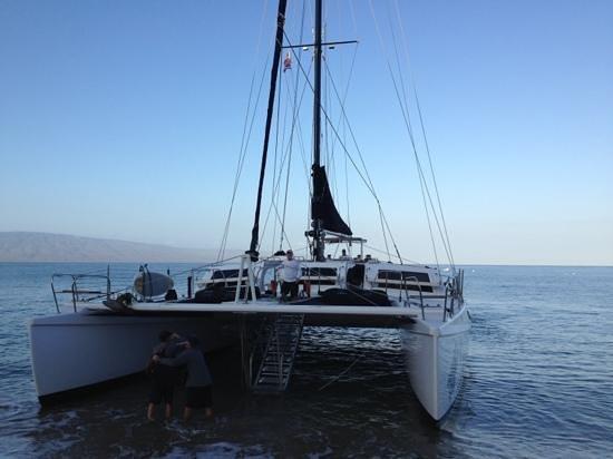 Westin Maui Resort And Spa: Gemini charters from Westin Resort