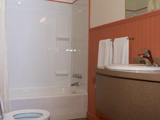 Perce Au Pic de l'Aurore: Bathroom of a chalet