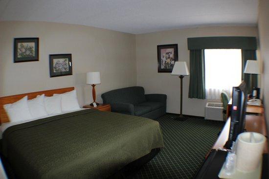 All Seasons Inn & Suites: King Room