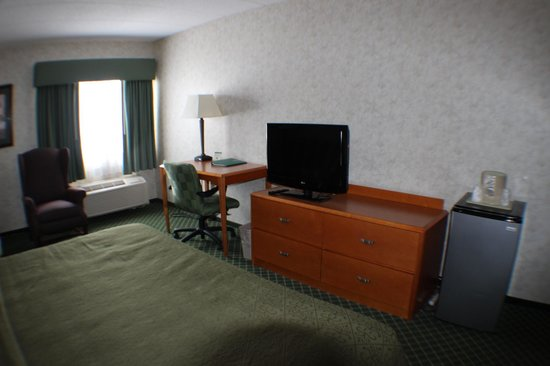 All Seasons Inn & Suites: Room