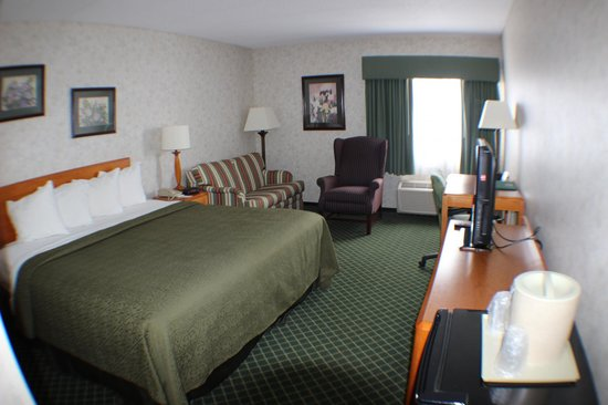 All Seasons Inn & Suites: King room with sofa bed