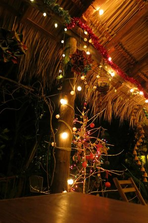 La Mariposa Spanish School and Eco Hotel: Christmas decorations (a foil covered coffee tree--love it!)