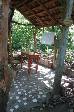La Mariposa Spanish School and Eco Hotel: A typical classroom (one student, one instructor!)