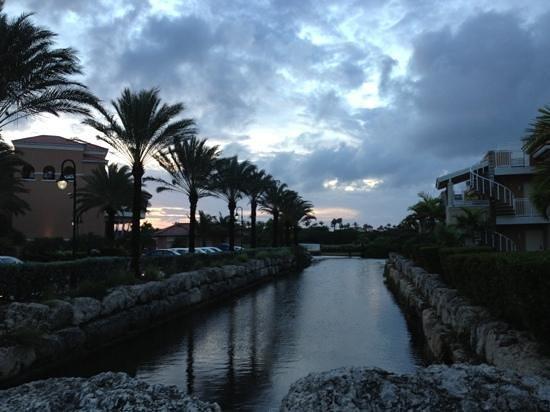 Divi Village Golf and Beach Resort: Una vista del hotel