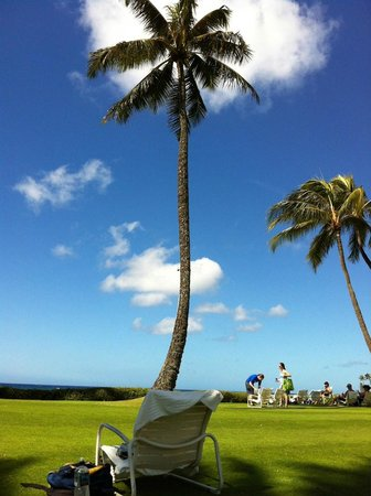 Kiahuna Plantation Resort: beachfront lawn