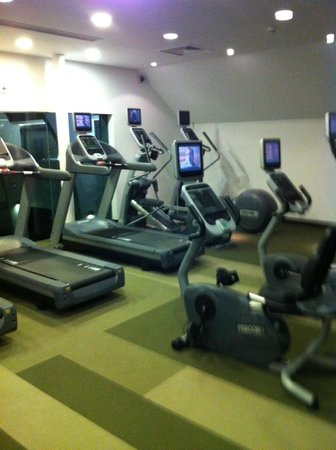 Carton House Hotel & Golf Club: Gym