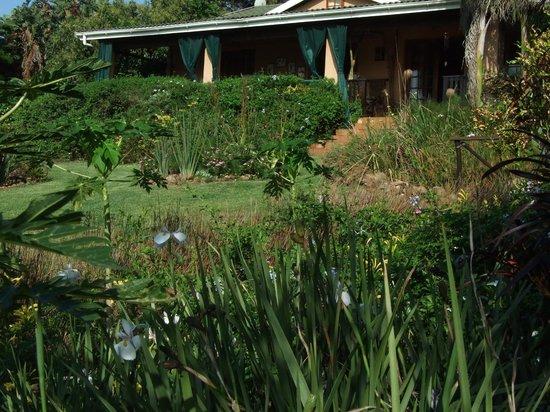 Bird and Butterfly B&B: Garden