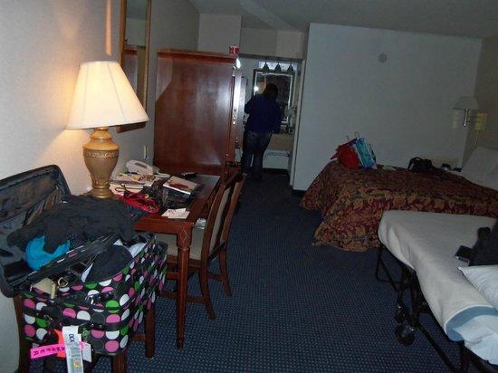 Days Inn Arlington Pentagon: Room