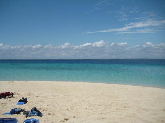 Beach Crab Resort: paradise-island, snorkeling-tour