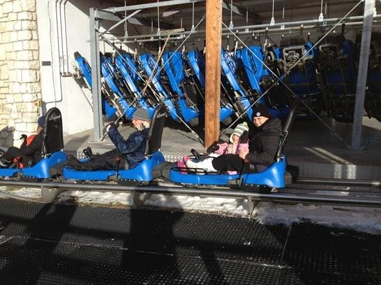 Ski Center Latemar : alpine coaster