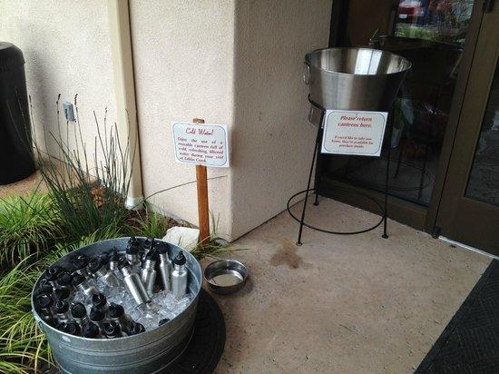 Tablas Creek Vineyard : Really great idea - water bottles for day use!