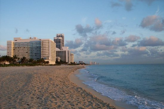 Mimosa Condos Miami Beach The Best Beaches In World