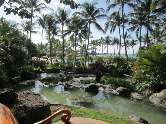 Fairmont Orchid, Hawaii: Fish pond