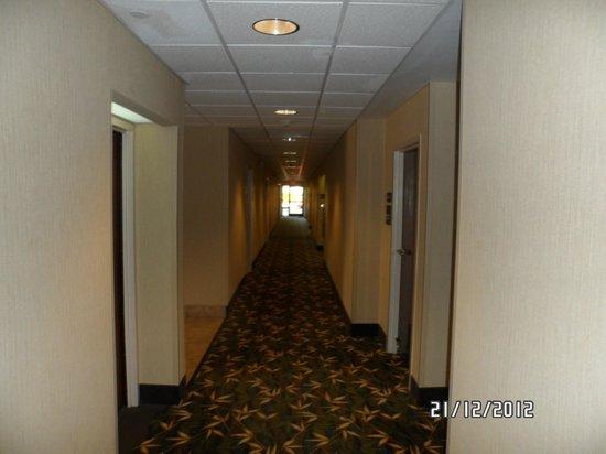 Hampton Inn Orlando International Drive/Convention Center: Corredor do sexto andar!