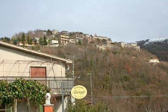 Il Tartufo , Stipes Italia .