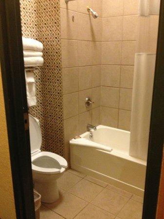 Great Wolf Lodge: Bathroom