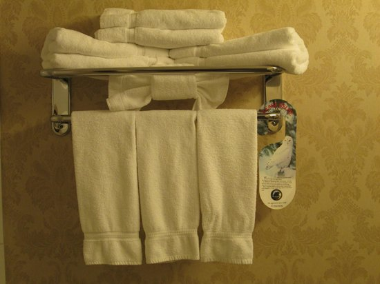 هوليداي إن فانكوفر إيربورت: Artistic towel display!