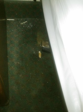 Good Nite Inn - Redwood City: I realize we booked a smoking room, but this is a little much!