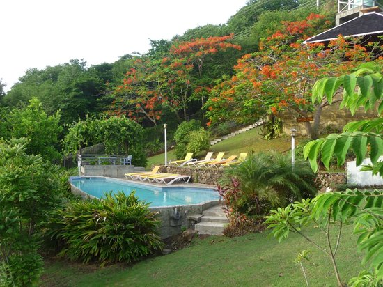 Sugarapple Inn: pool