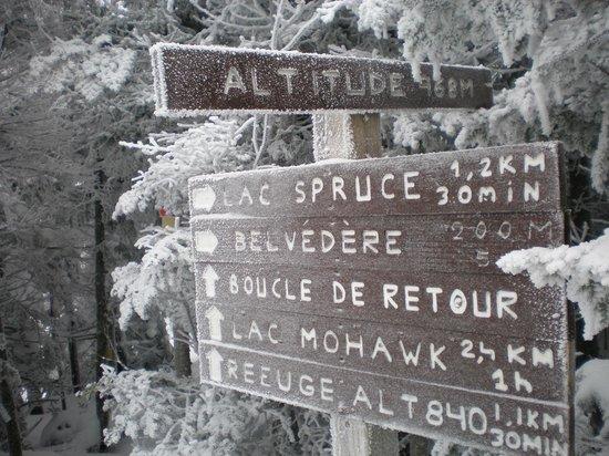 Parc d'environnement naturel de Sutton: The direction sign at the summit