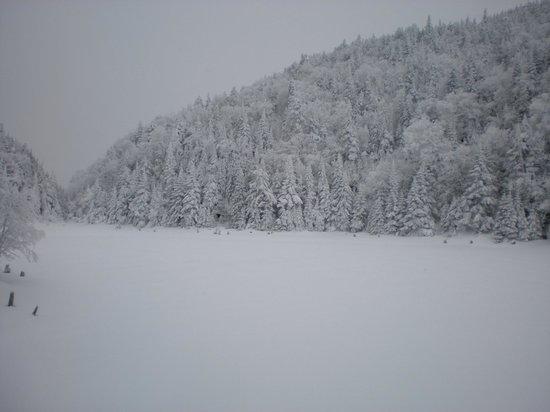 Parc d'environnement Naturel de Sutton: Lac Spruce