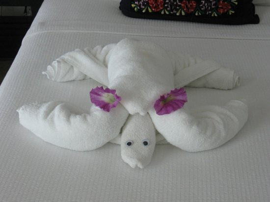 Casa Sirena Hotel: Sea Turtle Towel Creature