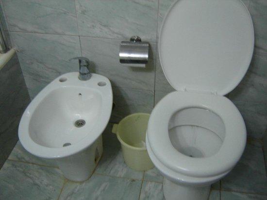 Hotel Tropical: La tapa del inodoro UN ASCO