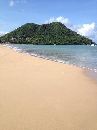Coco Palm Resort: breathtaking mountain view....lush