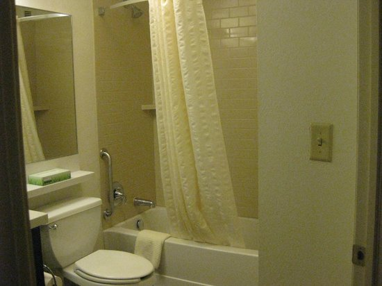 Candlewood Suites Chicago O'Hare: bathroom