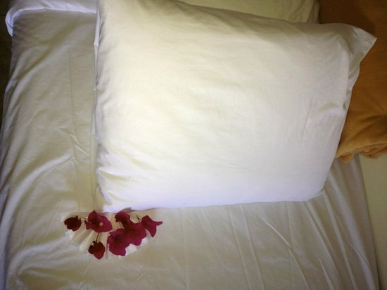 Alexandra Resort: Made bed
