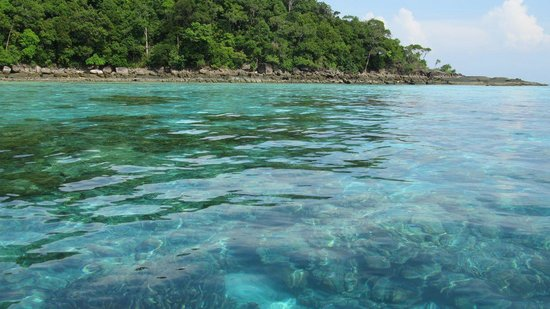 Mu Ko Surin National Park: Beautiful clear water