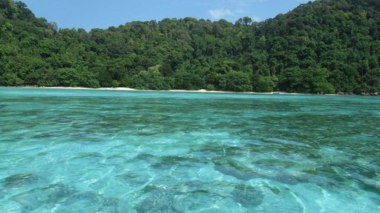 Khuraburi, Thailand: Beautiful clear water