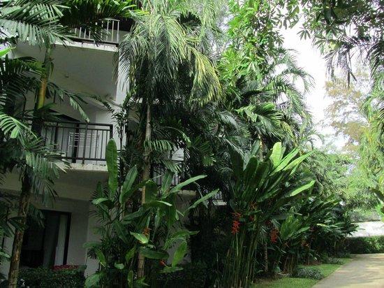 Nai Yang Beach Resort and Spa: Hotel ground