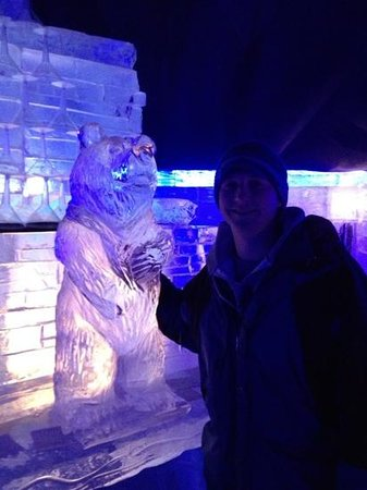 Grand Superior Lodge: cool bear in the ice bar