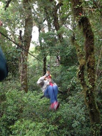 Canopy Adventure Barva Volcano: Mi hermano disfrutando de los hermosos paisajes!!